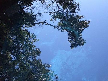 水面に映る、青空。
