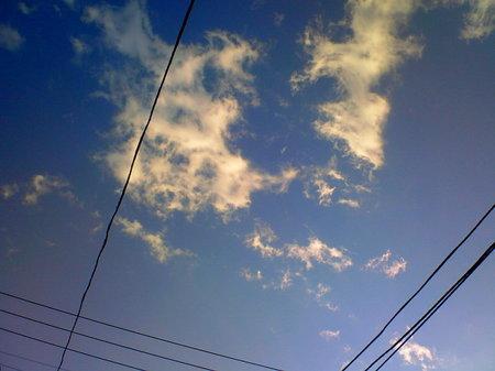たまには夕焼け空を見上げようか、たろ。