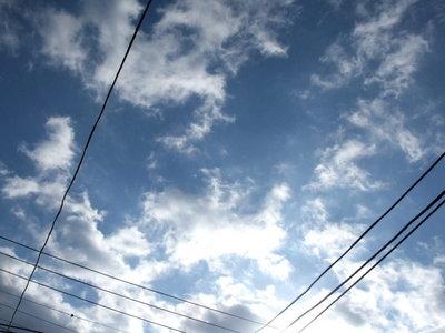 今日も風の強い一日でした。