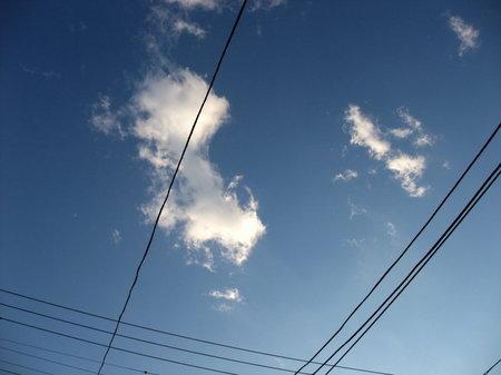 ほうら、空が青いよ。