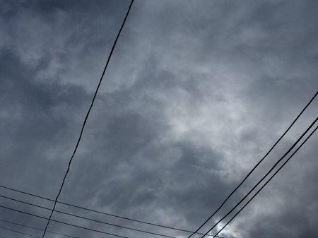 今日は曇ってるねぇ…たろ。
