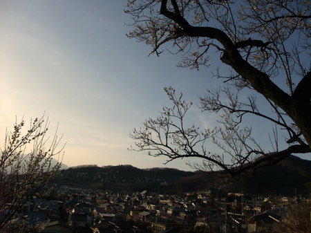 不老園の展望台から。甲府盆地を望む。
